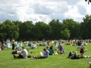 very crowded green park on a sunny day.JPG